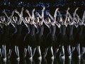 Swan Lake Production - ballet wallpaper