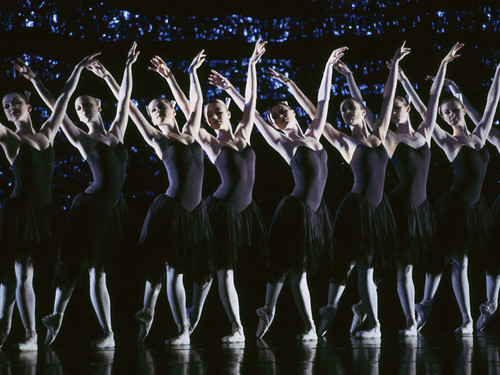 Swan Lake Production