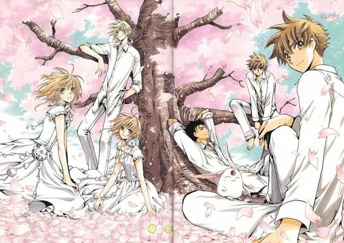 The Entire Tsubasa Group (Li Syaoran, Clone Syaoran, Sakura, Clone Sakura, Kurogane, Fai, Mokona)