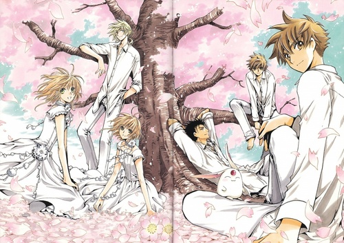 Tsubasa: Reservoir Chronicles karatasi la kupamba ukuta called The Entire Tsubasa Group (Li Syaoran, Clone Syaoran, Sakura, Clone Sakura, Kurogane, Fai, Mokona)