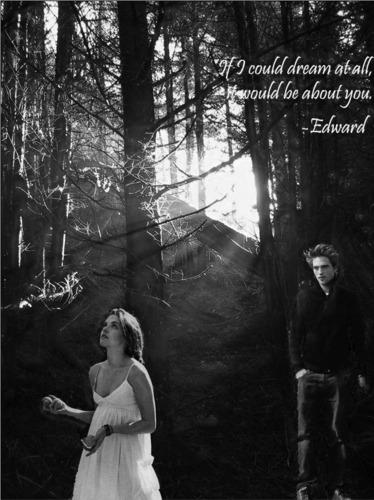Twilight picks