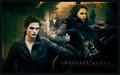 Twilight picks - twilight-series photo