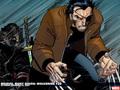 wolverine - Wolverine wallpaper
