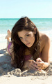 Ashley's Sobe Photoshoot - twilight-crepusculo photo