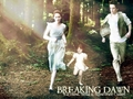 Bella Edward & Renesmee