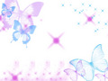 butterflies - Butterfly Sparkle wallpaper