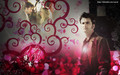 DOCTOR WHO - david-tennant wallpaper