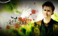 david-tennant - DOCTOR WHO wallpaper