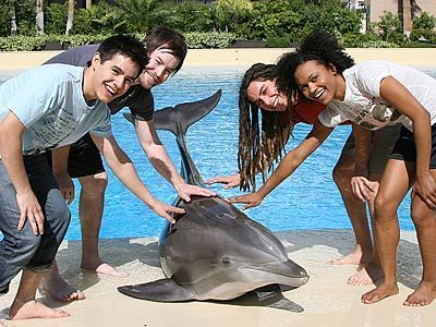 American Idols With Dolphin!