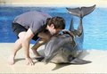 David Kisses Dolphin - dolphins photo