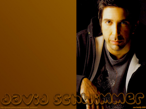 David Schwimmer wallpaper called David