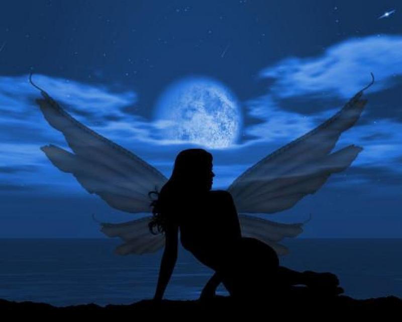 Moonlight -  fairies photo