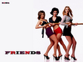 Friends hot girlz  ;) - friends wallpaper