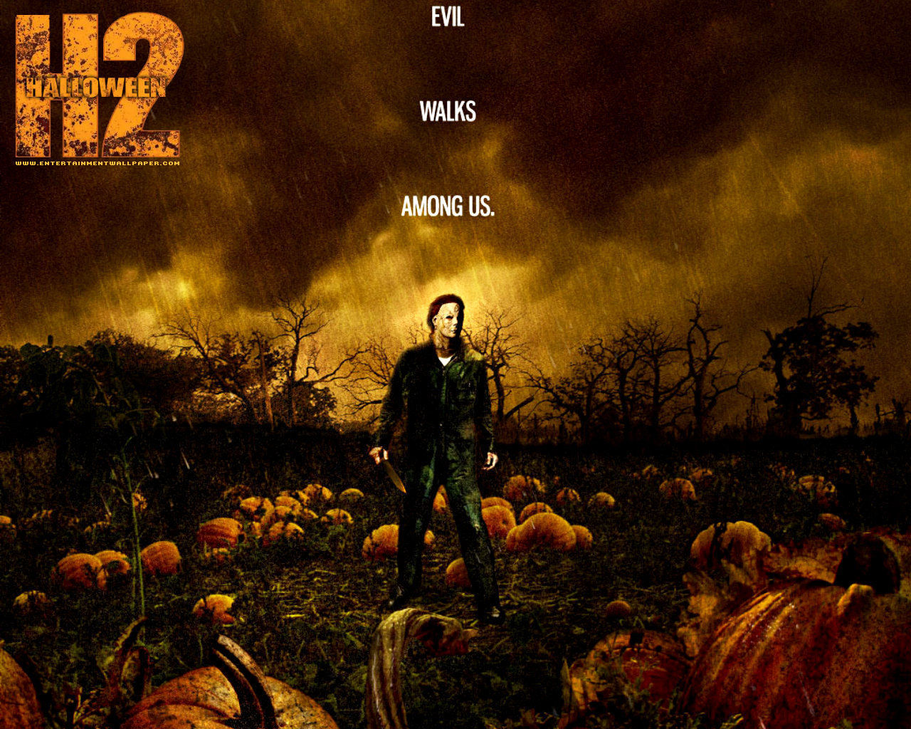 Halloween images Halloween HD wallpaper and background photos