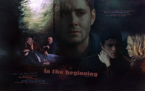 In The Beginning wolpeyper