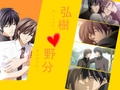 Junjou Romantica - yaoi wallpaper