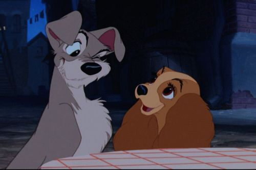Disney's Lady and the Tramp images Lady and the Tramp HD wallpaper and background photos