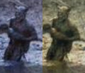 Photos of the Swamp Beast - legendary-monsters photo