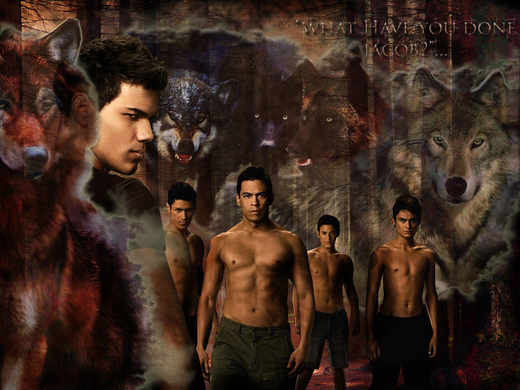twilight wolf pack in - photo #26