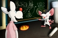 pinky and the brain - animaniacs photo
