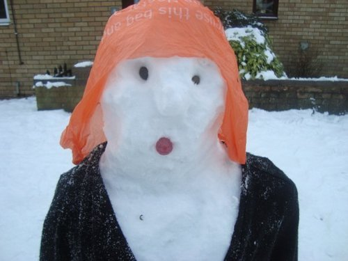 snow hayley