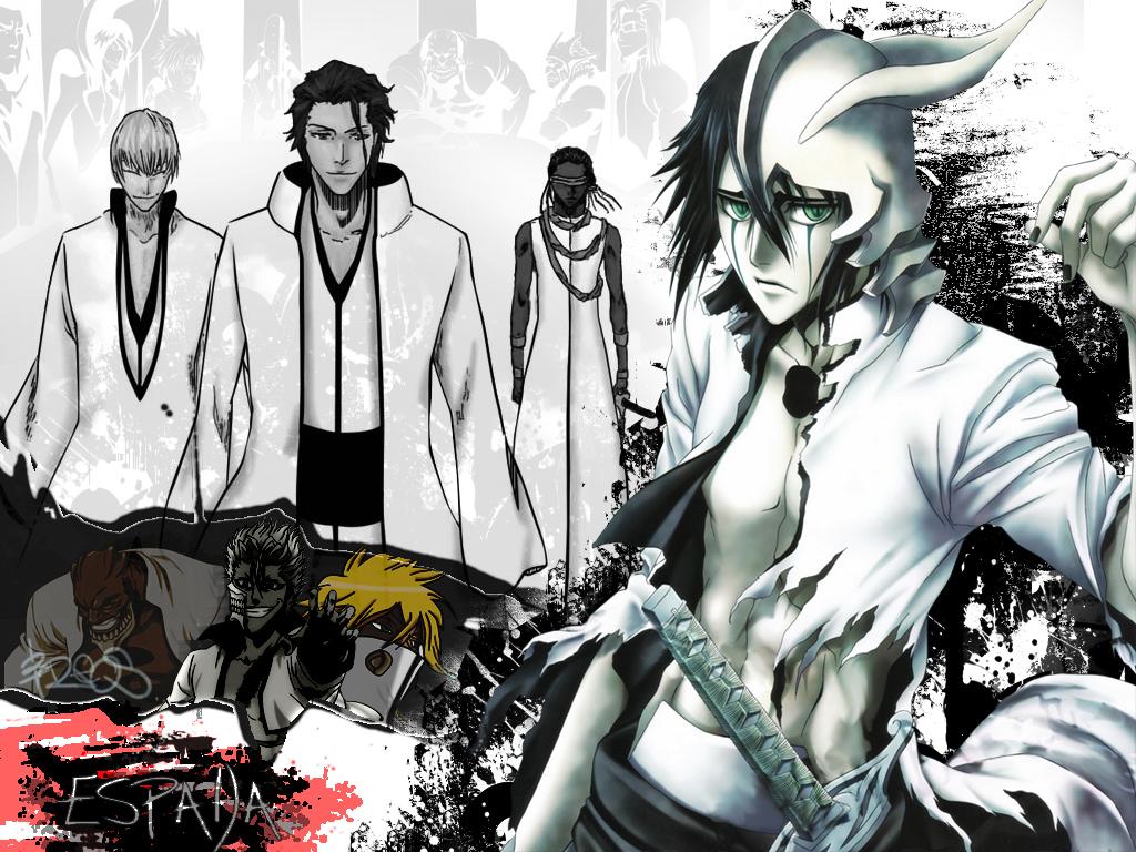 Gotei 13 or espada poll results bleach anime fanpop - Bleach espadas ...