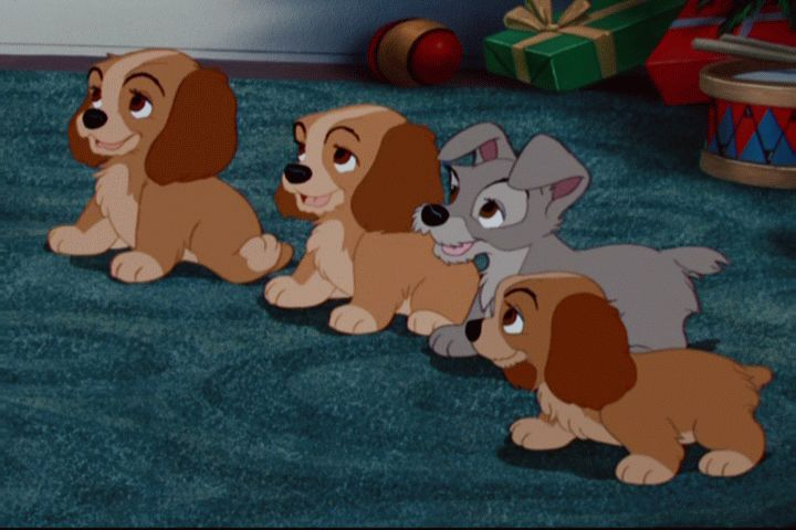 Did You Expect Lady And Tramp To Have Puppies Disney S Lady And The Tramp Fanpop