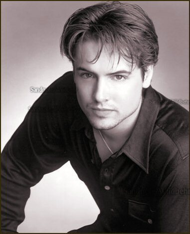 will friedle voice acting
