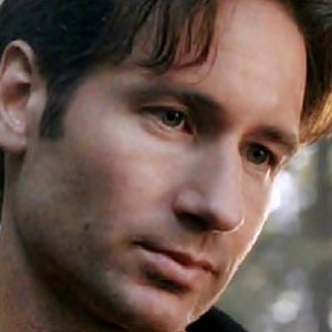 Fox Mulder or Hank Moody? Explain your choice if you can ...