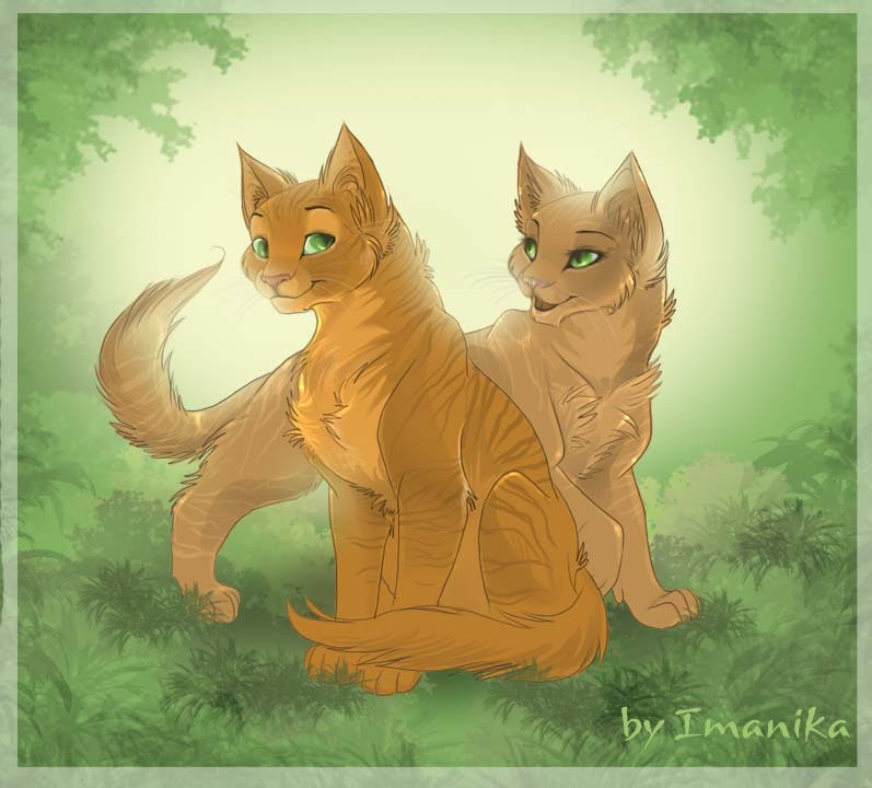 Firestar And Sandstorm Warrior Cats