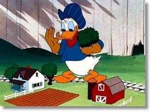 Which Donald Duck's cartoon ?