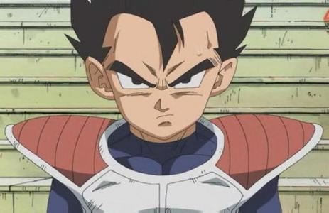 What is the name of Prince Vegeta's brother?