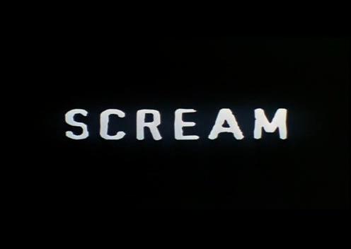 In Scream 1 what movie was playing when Dewey was in Stu's house?