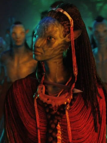 What is the name of Neytiri&#39;s mother, who is also the Na&#39;vi shaman?