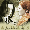 What year was it that Snape and Lily lost there friendship after calling her a Mudblood?