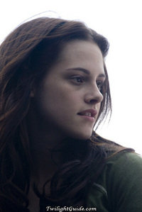 What does Stephenie Meyer say Bella's tragic flaw is?