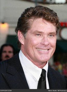 What Spongebob show or movie was David Hasselhoff in?