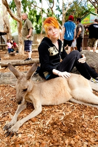 After I saw this pic of Hayley and kangaroo, I said that I wanted a pet kangaroo what did I say I'd name it?
