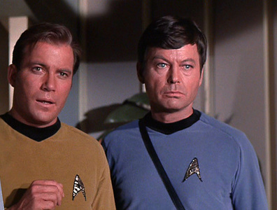 """What is McCoy referring to? """"There's nothing disgusting about it. It's just another life form, that's all. You get used to those things""""."""