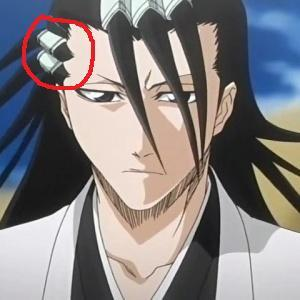 What are thoes things in Byakuya's hair called?