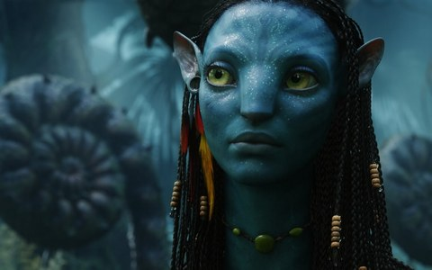 What is Neytiri saying in this photo?