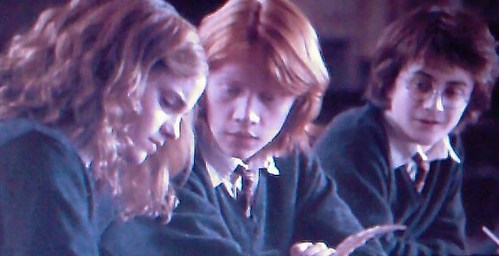 What was ron asking hermione in this scene, from the GOF movie