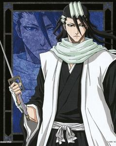 What is the name of the thing that only cover the back of Byakuya's hand?