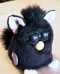 what is the name of my furby?