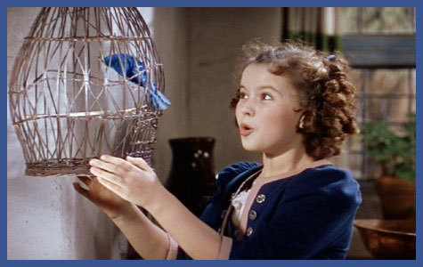 what movie shirley temple in ?