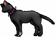 is scourge firestar's half brother