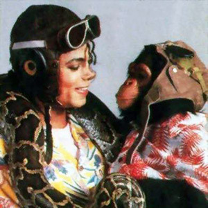 In which 年 Michael adopted Bubbles ?