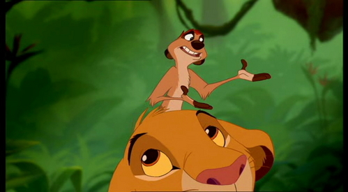 How many stripes does Timon have?