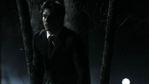 1x19: Damon's 'look' came when Bonnie had which face?