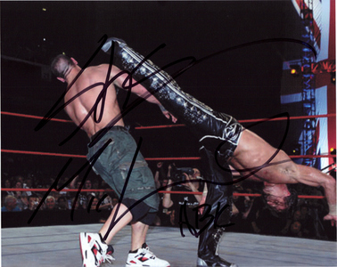 The name of Shawn Michaels's famous finisher is :